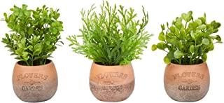 纯花园仿真 20.32 厘米高绿植园植物圆形 3 件套,装饰人造室内装饰盆栽叶子
