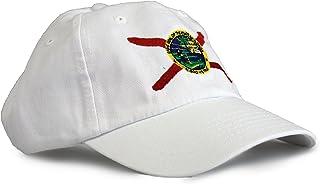 Ann Arbor Tee Co. 佛罗里达州旗低调棒球帽/帽子