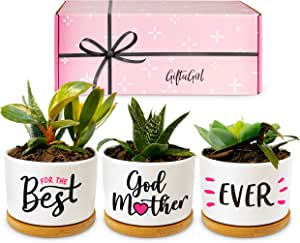 GIFTAGIRL Godmother Gifts from Godchild - Our Beautiful Best Godmother Ever Succulent Pots are The Best Godmother Gifts. This Godmother Gift is a Unique and Adorable Gift for Godmother from Godchild