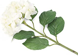 花朵优雅人造_家长 Dozen 白色 12F057WL