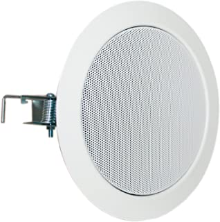 VISATON 50162 MP3 和 iPod 白色 扬声器