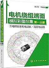 电机绕组端面模拟彩图总集.第一分册----三相常规系列电动机·高压电动机