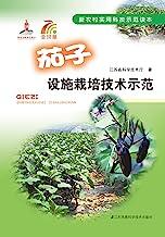 茄子设施栽培技术示范