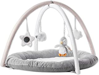 Penguin Play Gym