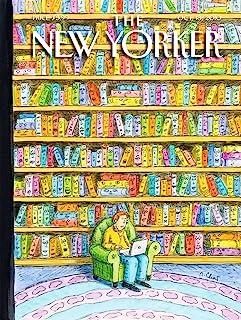 纽约拼图公司 - 纽约货架-750 片拼图