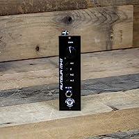 Black Lion Audio Auteur MKII 500-500 系列麦克风前置放大器