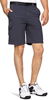 Columbia Sportswear 男士 Silver Ridge 工装短裤