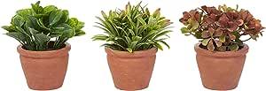 Pure Garden 人造 6 英寸(约 15.2 厘米)高*植物排序房屋植物圆形 3 件套,装饰人造室内装饰盆叶
