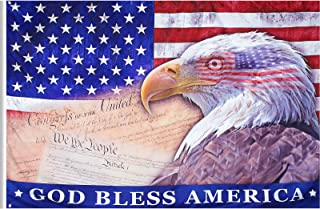 Tatuo 美国复古美国国旗秃头爱国鹰旗鹰 7 月 4 日纪念独立日旗帜 3 x 5 英尺,涤纶双线缝合户外室内家居假日装饰