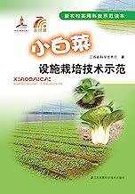小白菜设施栽培技术示范