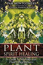 Plant Spirit Healing: A Guide to Working with Plant Consciousness (English Edition)