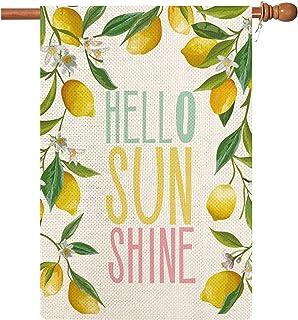 Coskaka Hello Sunshine House 旗帜,夏季柠檬树和花卉季节性垂直双面水牛格子乡村农田粗麻布院草坪户外装饰 71.12 x 101.6 厘米