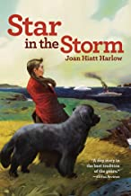 Star in the Storm (Aladdin Historical Fiction) (English Edition)