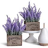 Butterfly Craze 人造薰衣草盆栽植物,乡村农舍装饰,适用于家庭、厨房和办公室,理想的丝绸花卉布置,两件套