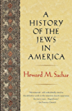 A History of the Jews in America (English Edition)