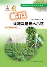黄瓜设施栽培技术示范