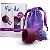 Merula Cup Galaxy(紫罗兰)- 均码*杯,*硅胶制成,10 克