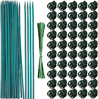 Jetec 50 件兰花夹塑料花园植物夹,带 30 件*竹植物夹,30 件金属扭结扎,用于支撑茎、藤蔓、直立生长(38 厘米)