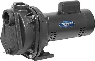 Superior Pump 96220 2 HP 铸铁草坪灌溉泵,黑色