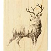 Inkadinkado 圣诞驯鹿安装橡胶印章,用于制作卡片和剪贴簿,8.89 cm x 10.16 cm x 2.54…