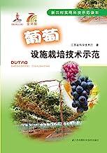 葡萄设施栽培技术示范