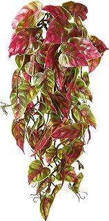Penn Plax Reptology Climber 葡萄* Reptile Terrarium 植物装饰 红色和绿色 30.48 厘米