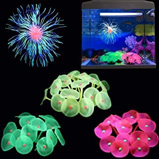 发光水族箱装饰硅胶鱼缸装饰 4 件装