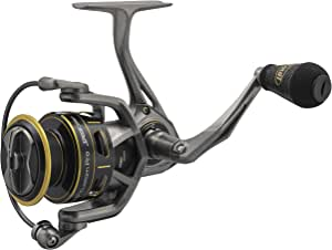 Lews 钓鱼,定制专业速纺车式渔线轮,6.2:1 齿轮速比,12 轴承,22 磅*大拖拉,双手通用