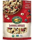 Nature's Path Organic Gluten-Free Granola Cereal, 11 Ounce…