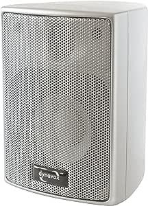 Dynavox AS-301 卫星扬声器,一对,适用于家庭影院或办公室,紧凑型环绕音箱,壁挂式,银色
