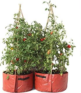Tierra Garden PLANTER25 Haxnicks 番茄露台花盆(2 件装)