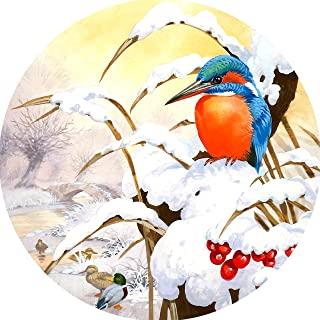 成人用 5D 钻石绘画套装,雪景十字绣圆形全钻水晶水钻刺绣鸟图片艺术工艺品家居墙壁装饰 11.8 × 11.8 英寸