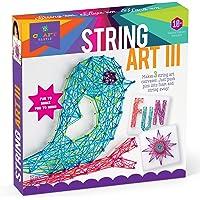 Craft-tastic 弦艺套装—Craft Kit制作,大弦艺画布,3个, Bird版本