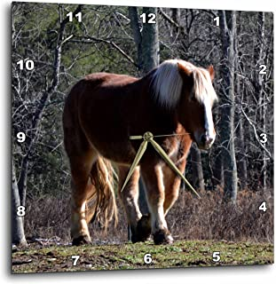 3dRose dpp_172311_3 A Brown and White Horse Walking at His Own Pace-Wall Clock, 15 by 15-Inch