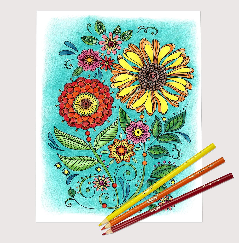 新低!亚马逊限定色,销量冠军:Crayola绘儿乐 100色彩色铅笔