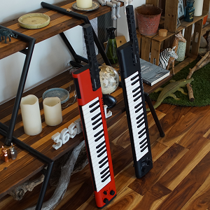 B07PJ1927Y - Yamaha Sonogenic SHS-500 Keytar
