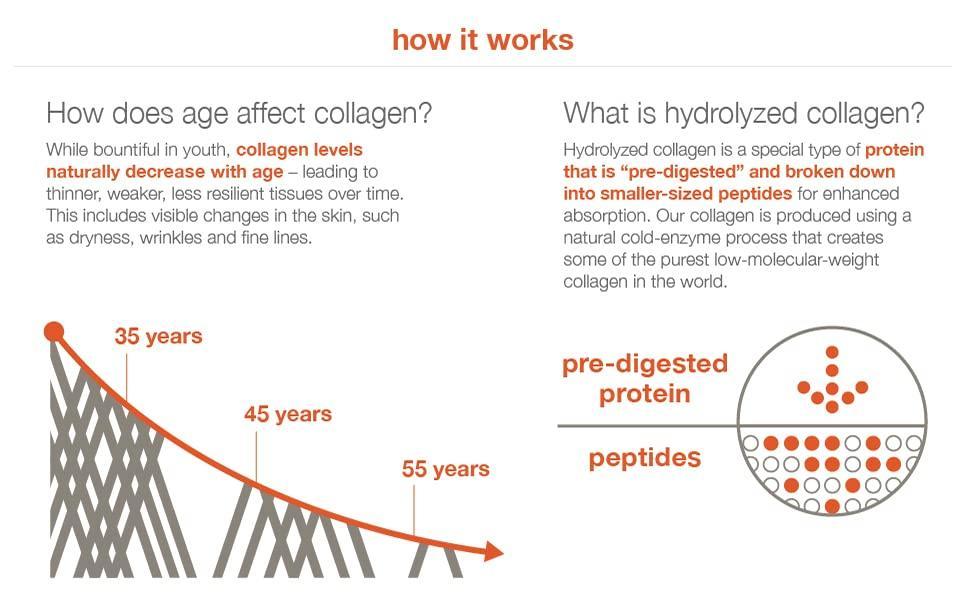 Collagen Panel 3