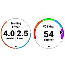 Training Performance Metrics